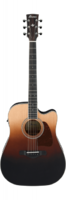 Ibanez Artwood AW80CE-BLG