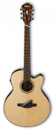 Ibanez AELFF10-NT Multi Scale